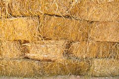 Pile of straw Stock Photography