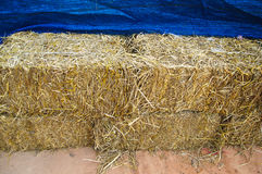 Pile of straw by product from rice field Stock Photo