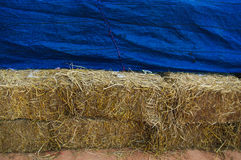Pile of straw Royalty Free Stock Photo