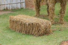 Pile of straw used animal food Stock Image