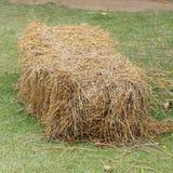 Pile of straw used animal food Royalty Free Stock Photos