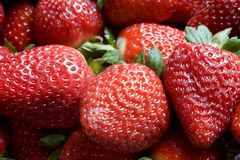 A Pile of Strawberries Stock Image