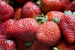 A Pile of Strawberries Royalty Free Stock Photography
