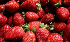 A Pile of Strawberries royalty free stock photos