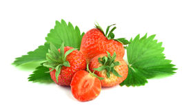 A pile of strawberries with leaf, isolated. Royalty Free Stock Image