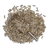 Pile of sunflower seed Stock Photos