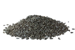 A pile of sunflower seeds Stock Photography