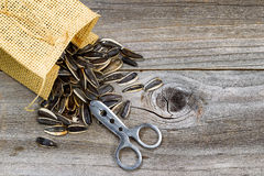 Pile of sunflower seeds with bag and opener on rustic wood Royalty Free Stock Image
