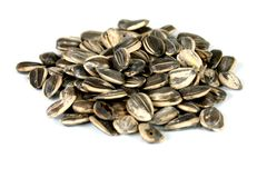Pile of sunflowers seeds. Sunflower seeds on white Stock Images