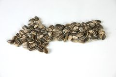 Pile of sunflowers seeds in arrow Royalty Free Stock Image