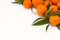 A pile of tangerine branches. A pile of orange tangerine brancheswith green leaf on white background royalty free stock images