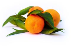 A pile of tangerine branches Stock Photography