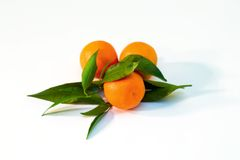 A pile of tangerine branches. A pile of orange tangerine brancheswith green leaf on white background royalty free stock photography