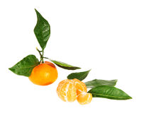 Pile of tangerine on the white Royalty Free Stock Photo