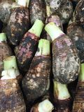 Pile of taro for retail sale in local market. Background of fresh taro stock photography