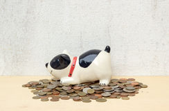 Pile thai baht coin with doggy bank on plywood background and co Stock Photography