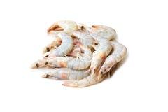 Pile of tiger prawns Stock Photo