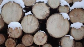 Pile of timber covered in snow on winter day. Pile of timber along road at sawmill covered in white snow on winter cloudy day stock video footage