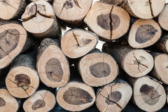 Pile of  timber Stock Photography