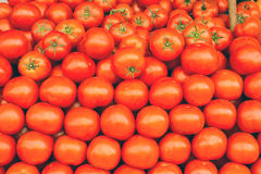 A pile of tomatoes Stock Photo