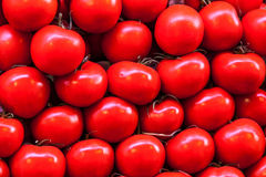 Pile of tomatoes Stock Photography