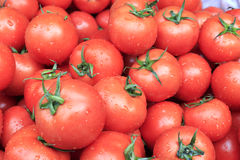 Pile of tomatoes. For sale in local market Royalty Free Stock Images