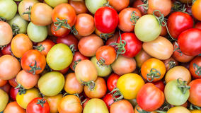 Pile of tomatoes. For sale in local market Royalty Free Stock Image