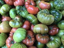 A pile of tomatoes Stock Photos