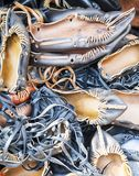 Pile of traditional Romanian sandals Stock Photography