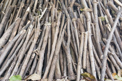 Pile of tree branches composition as a background texture. Stock Photo