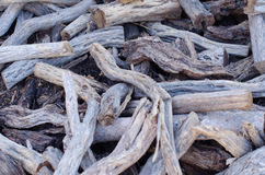 Pile of tree branches composition Royalty Free Stock Images
