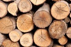 Sawn logs wood pile Royalty Free Stock Photo