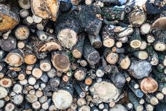 Pile of tree logs in difference sizes and tickness stock images