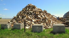 Pile of tree logs in pyramid shape. Cut logs piled into a pyramid shape Royalty Free Stock Images