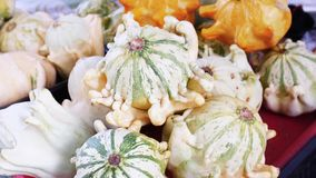 A pile of trendy ugly organic pumpkin, zero waste production in food industry