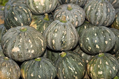 A Pile of Tropical Kabocha Japanese Pumpkin Stock Photos