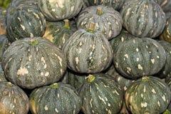 A Pile of Tropical Kabocha Japanese Pumpkin Stock Photos