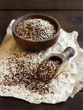 Pile of uncooked mixed quinoa grain Stock Image