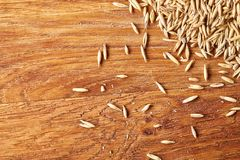 Pile of unpeeled oat grains on wooden background, top view, close-up, macro, selective focus. Some copy space. Dietary food. Vegan background. Healthy eating Stock Photography