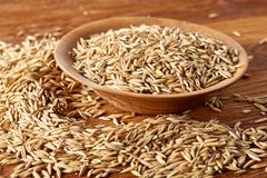 Pile of unpeeled oat grains on wooden background, top view, close-up, macro, selective focus. Some copy space. Dietary food. Vegan background. Healthy eating Royalty Free Stock Image