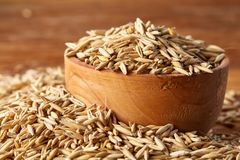 Pile of unpeeled oat grains on wooden background, top view, close-up, macro, selective focus. Some copy space. Dietary food. Vegan background. Healthy eating Royalty Free Stock Photos