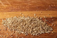 Pile of unpeeled oat grains on wooden background, top view, close-up, macro, selective focus. Some copy space. Dietary food. Vegan background. Healthy eating Stock Images
