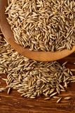 Pile of unpeeled oat grains on wooden background, top view, close-up, macro, selective focus. Some copy space. Dietary food. Vegan background. Healthy eating Royalty Free Stock Photography