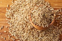 Pile of unpeeled oat grains on wooden background, top view, close-up, macro, shallow depth of field. Pile of unpeeled oat grains on wooden background, top view royalty free stock images