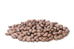 Pile of Unshelled Rich Brown Pecan Nuts Stock Photo