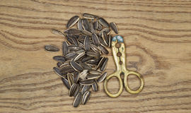 Pile of Unshelled Sunflower Seeds and Hand Tool Cracker Stock Photo