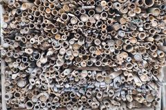 Pile of Unused Old Bamboo Stalk. Bamboo dried piles. Stack of unused old bamboo cuts and woods royalty free stock images