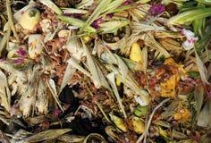 Pile végétale de compost Photographie stock