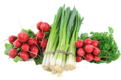 Pile vegetables - radishes, fresh onion, parsley. Still life picture of pile of different type organic vegetables radishes, fresh onion and curly parsley over Stock Image
