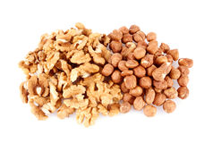 Pile of walnut kerneks and peeled hazelnuts isolated Royalty Free Stock Photos